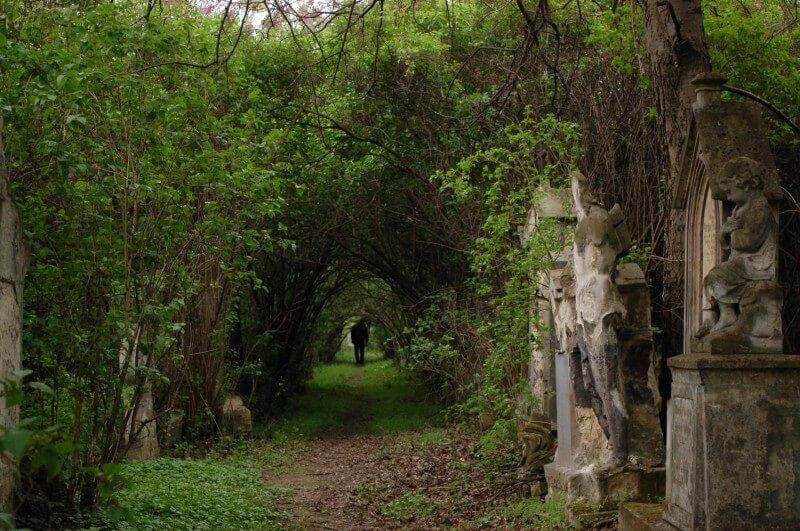 cimitir viena