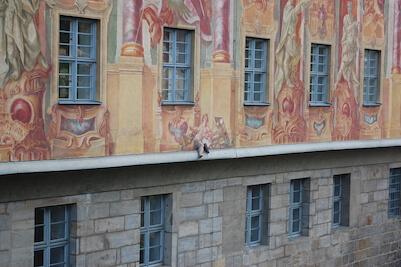 clădire pictată