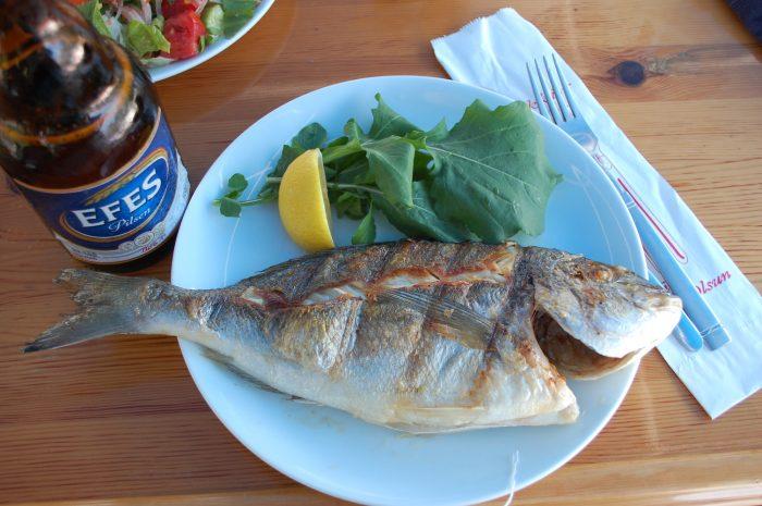pește turcia