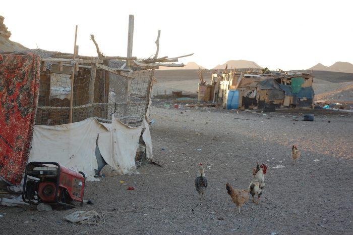 beduini marsa alam