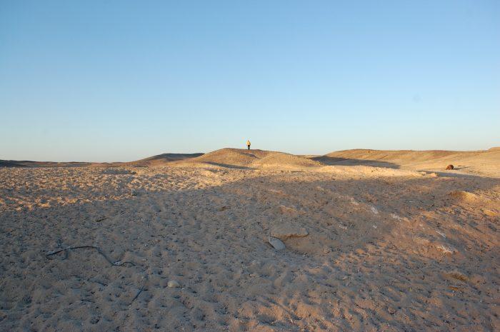 deșert
