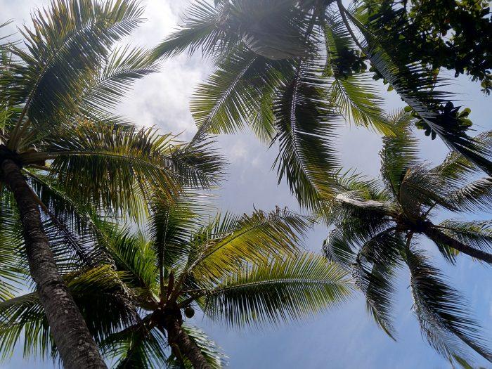 cebu filipine
