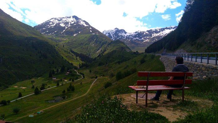 alpii elvețieni